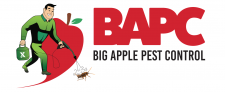 Big Apple Pest NYC